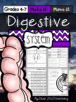The Human Body {Digestive System}