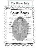 The Human Body- El Cuerpo Humano