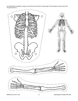 The Human Body Has Internal Parts: Skeleton and Muscles