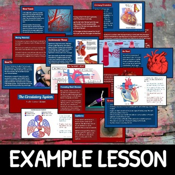 The Human Body: Life Science SLIDESHOW BUNDLE!