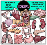 The Human Body - Organs Clip Art Bundle {Educlips Clipart}