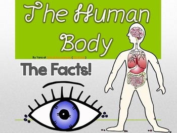 The Human Body & Organs Cool Facts, Functions & PPT Interactive Activities
