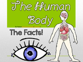 The Human Body & Organs Cool Facts, Functions & PPT Intera