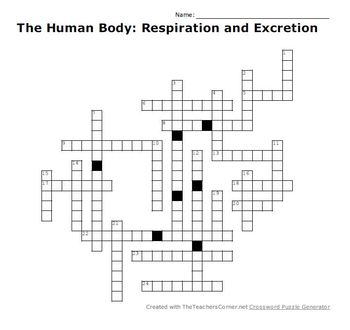 The Human Body: Respiration and Excretion Crossword Puzzle