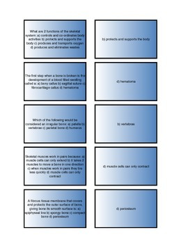 The Human Body - Skeletal System Flash Cards I