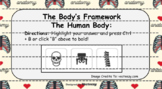 The Human Body - The Body's Framework (Skeletal System) In
