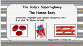 The Human Body - The Body's Superhighway (Circulatory Syst