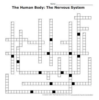 The Human Body: The Nervous System Crossword Puzzle