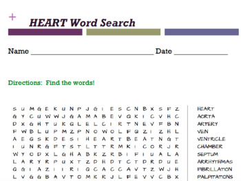 The Human Body Anatomy Word Searches by Curtis Sensei | TpT