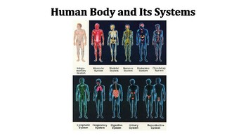 The Human Body and Its Systems