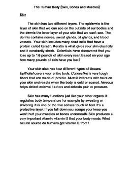 The Human Body (skin, bones and muscles)