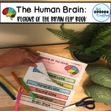 The Human Brain: Regions of the Brain Reference Flip Book