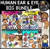 The Human Ear & Eye Clip Art Bundle {Educlips Clipart}