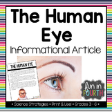 The Human Eye Informational Article
