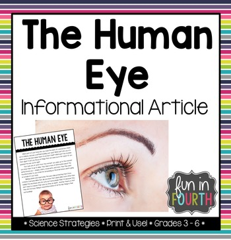 The Human Eye Informational Article