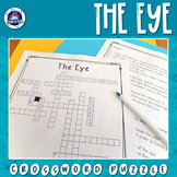 The Human Eye Crossword Puzzle