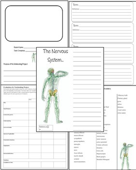 The Human Nervous System Science Notebooking Unit