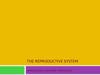 The Human Reproductive System Power Point