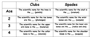 The Human Skeleton Pick a Card Game-A Small Group Science Game