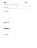 The Hundred Dresses Novel Study Worksheets