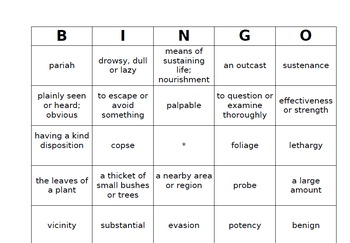 The Hunger Games- Bingo Vocabulary