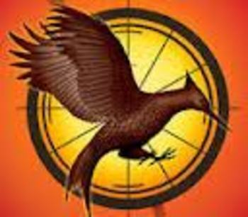 """The Hunger Games: Catching Fire"" Film Literacy Writing Assignments"