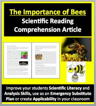 The Importance of Bees - Science Reading Article
