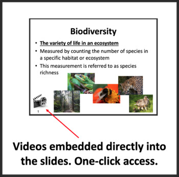 The Importance of Biodiversity - Ecology PowerPoint Lesson & Student Notes