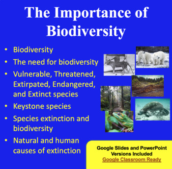 The Importance of Biodiversity - Ecology PowerPoint Lesson