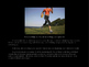 The Importance of Exercise PowerPoint