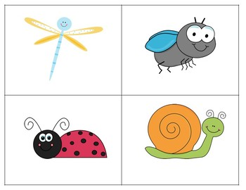 The Insect Book - Guided Reading Levels aa/A