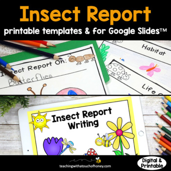 Bugs and Insects Activities - Insect Report Writing Templates