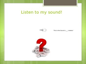 Insects- Who Am I?- Learning Game