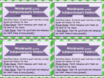 The Integumentary System and Membranes Task Cards