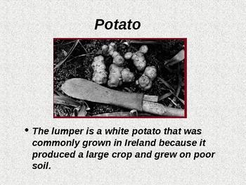 The Irish Famine