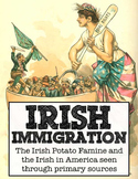 A Letter to Ireland: Irish immigration primary source stat