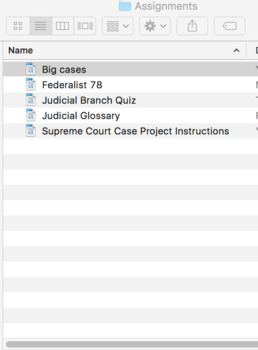The Judicial Branch (U.S. Government) Bundle with Video