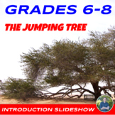 The Jumping Tree Introduction Slideshow
