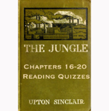 The Jungle by Upton Sinclair Chapters 16-20 Reading Quizzes Canvas/Schoology