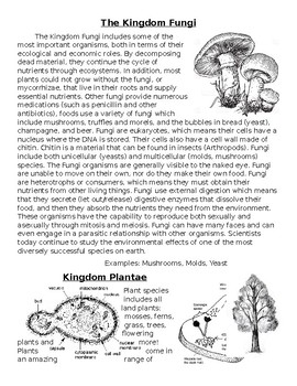 The Kingdom Jigsaw