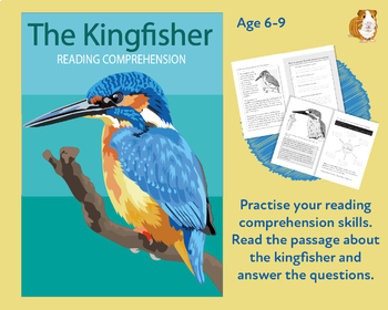 The Kingfisher: Let's Practise Our Reading Comprehension (6-9 years)