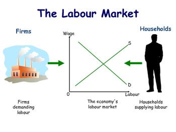 The Labour Market - Introduction to the Labour Market - Microeconomics