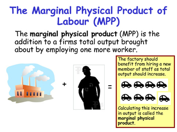 The Labour Market - Marginal Revenue Product & Marginal Physical Product