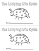 The Ladybug Life Cycle Emergent Reader