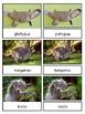 The Land Down Under--Australian Animals Montessori 3-part cards
