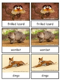 The Land Down Under--Australian Animals Montessori 3-part cards