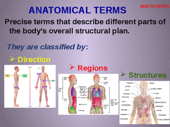 The Language of Anatomy (terms for physical direction and  location)