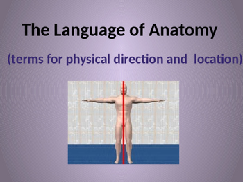 The Language of Anatomy (terms for physical direction and