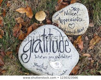 The Last Lecture: Letter of Gratitude