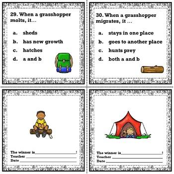 Grasshopper Comprehension Passages and Comprehension Questions No Prep